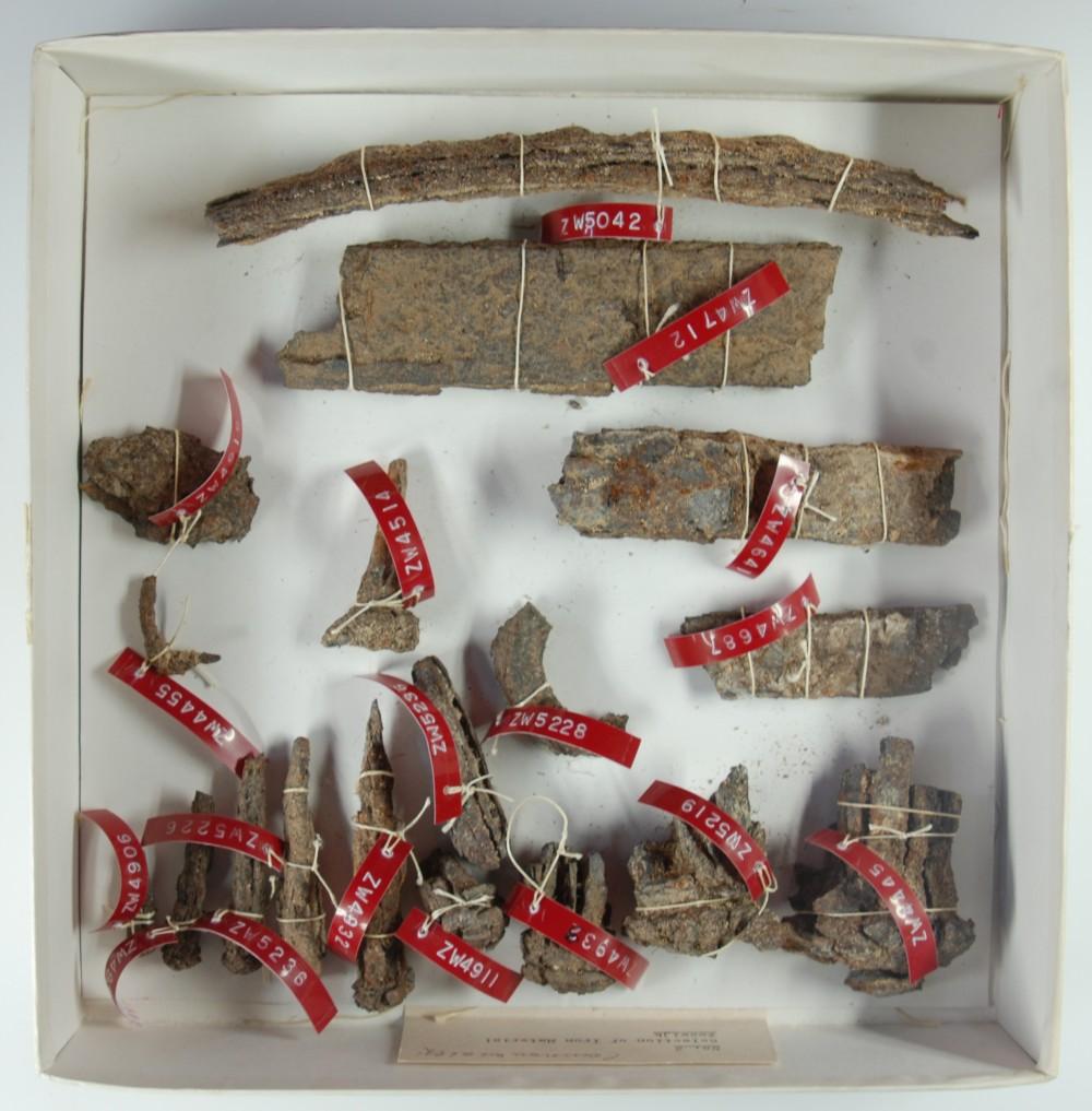 Tools artefact recovered from Zeewijk