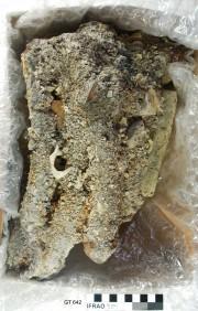 Bricks artefact recovered from Vergulde Draak (Draeck) (Gilt Dragon)