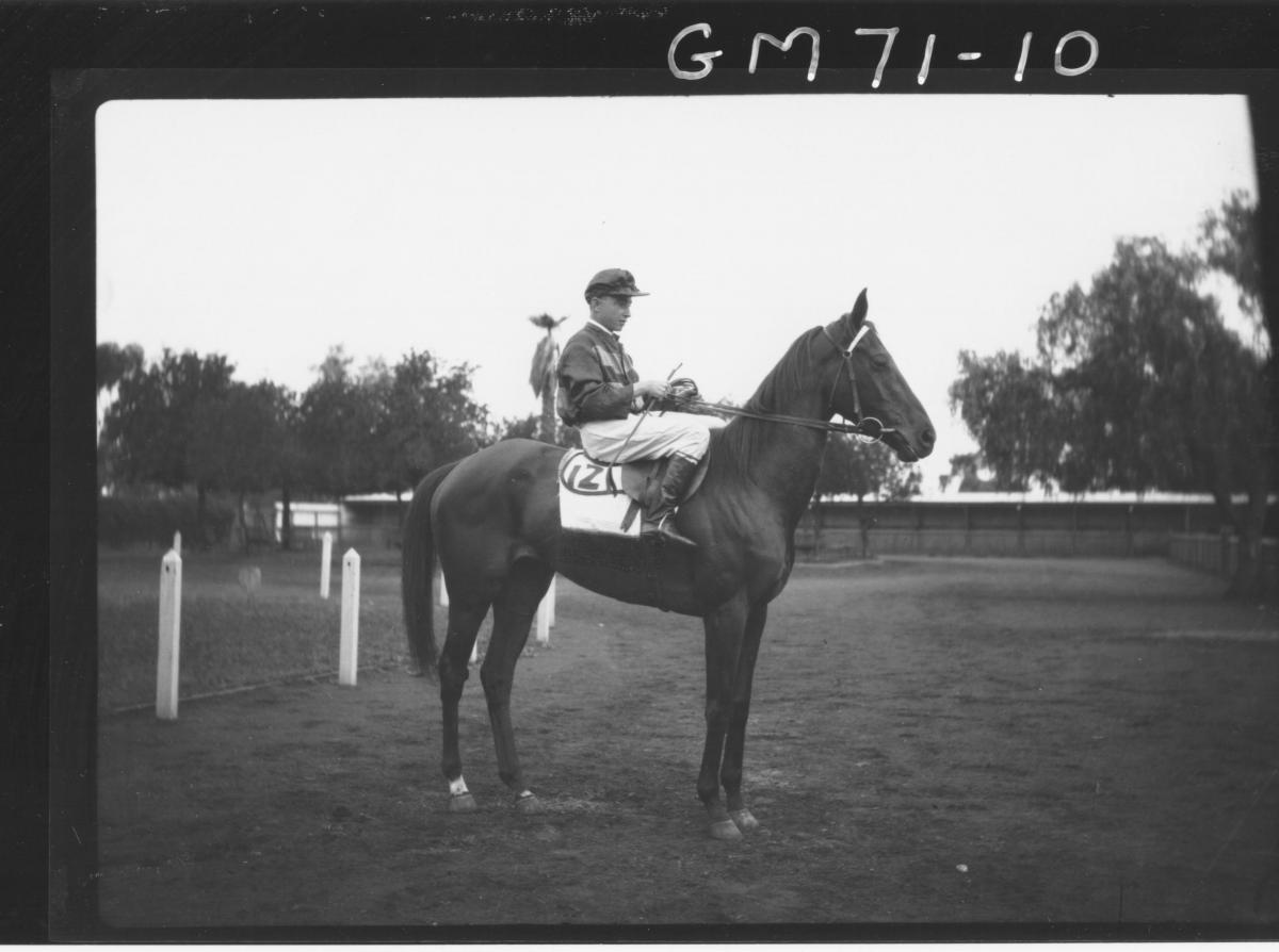 JOCKEY AND HORSE, SARACH
