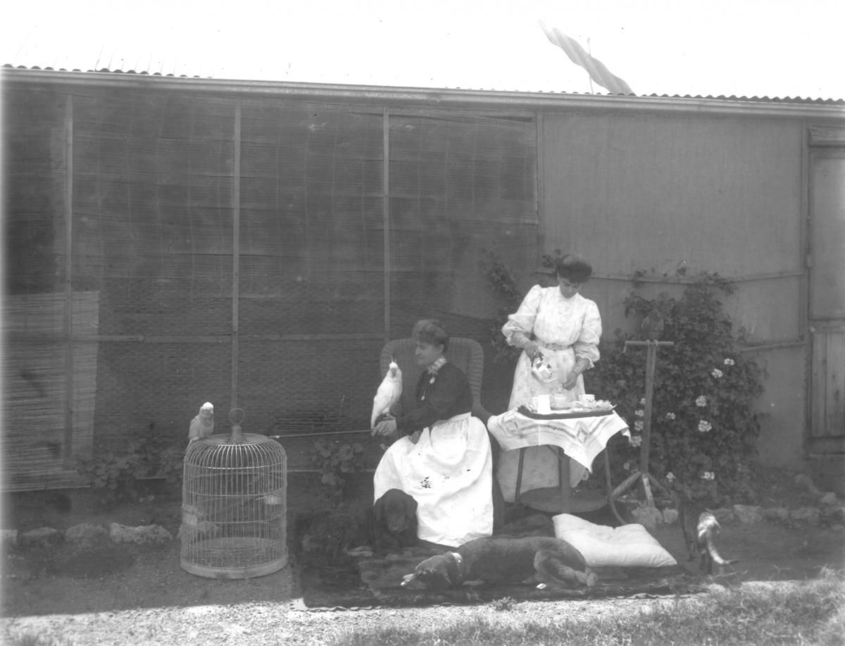 Two women outside house with pets, Mrs Meecham, one woman standing pouring tea, one woman seated with Galah.