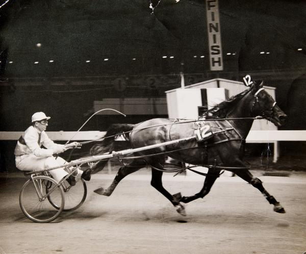 PHOTOGRAPH, b&w, Frank Kersley driving Caduceus, Inter Dominion Championships, Melbourne Showgrounds, 1959