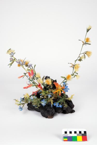 FABRIC WILDFLOWER SPECIMEN, Banksia, Blue Sun Orchid, Catspaw, Leschenaultia, Cockies Tongues, Thelma Knox