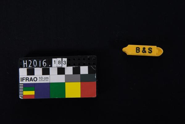 EAR TAG, yellow, 'INSEMINATORS 2005', 'B&S'
