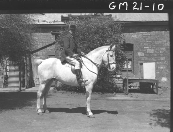 man in full riding outfit, sitting on horse F/L, Hill