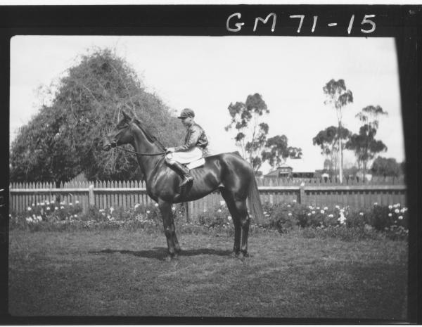 JOCKEY AND HORSE, VAIL