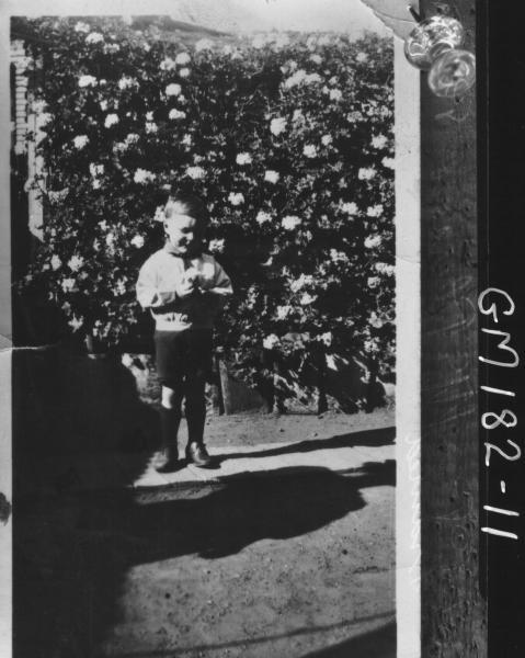 Copy of child 'McPherson' 'Pinnacles'