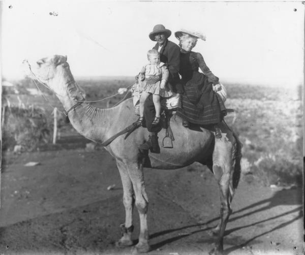 Charlie Wilson, Jessie and child Jack seated on a standing camel. Register 'Wilson Mr J.A. GRP on camel.