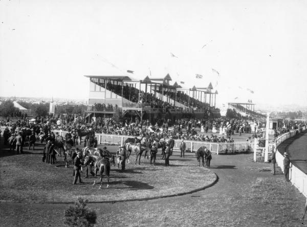 Large crowd at Boulder race course, grandstand in the background and horses in foreground, being weighed in.
