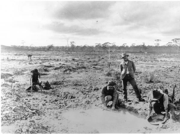 Three men prospecting on Fly Flat, with pans, primitive dry blower nearby. Telegraph line goes overhead, with telegraph camp buildings in distance in sparce bushland. Camel Paddock's.