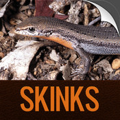 Skinks of the Perth Region