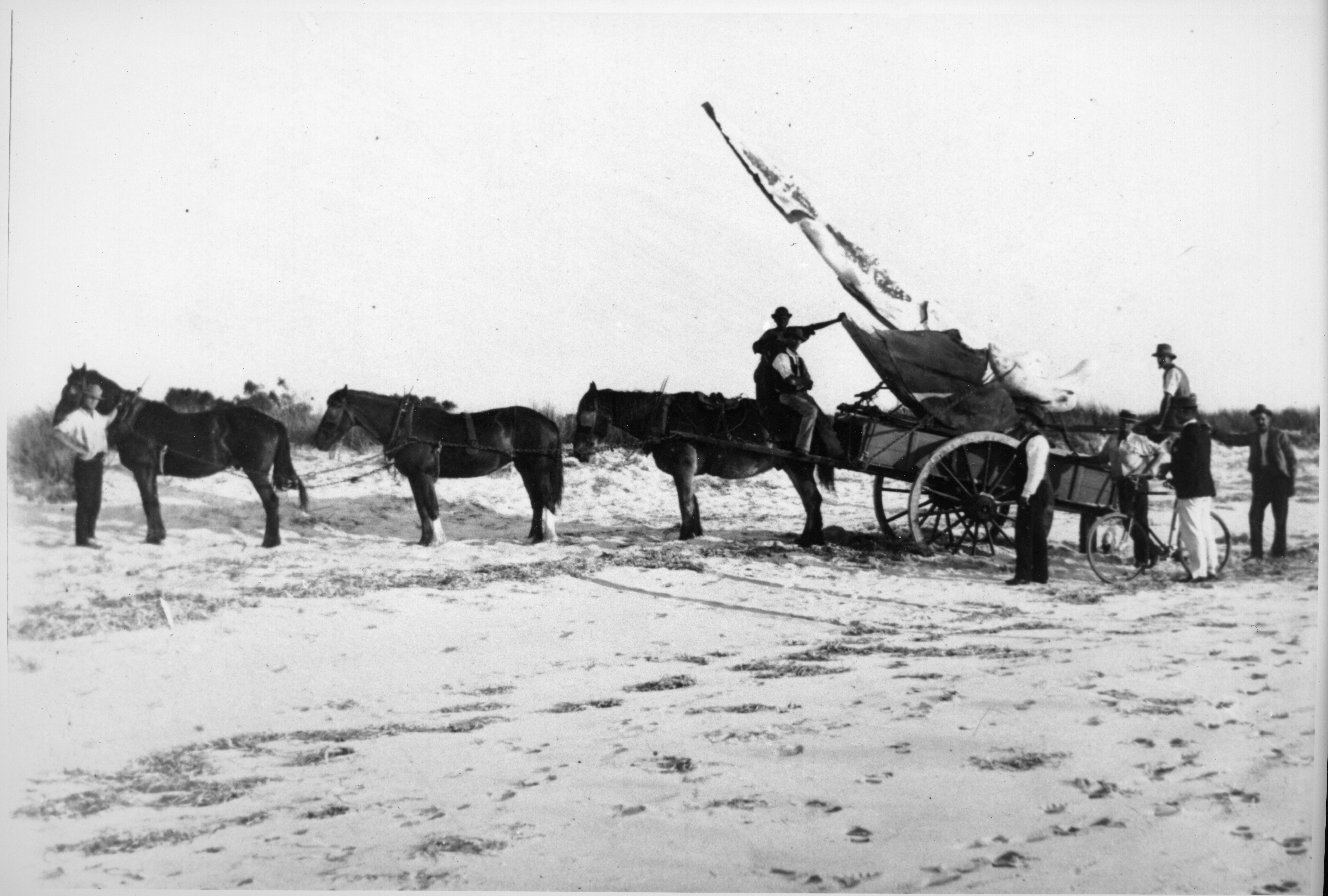 Black and white photo of a horse drawn cart holding a large bone.
