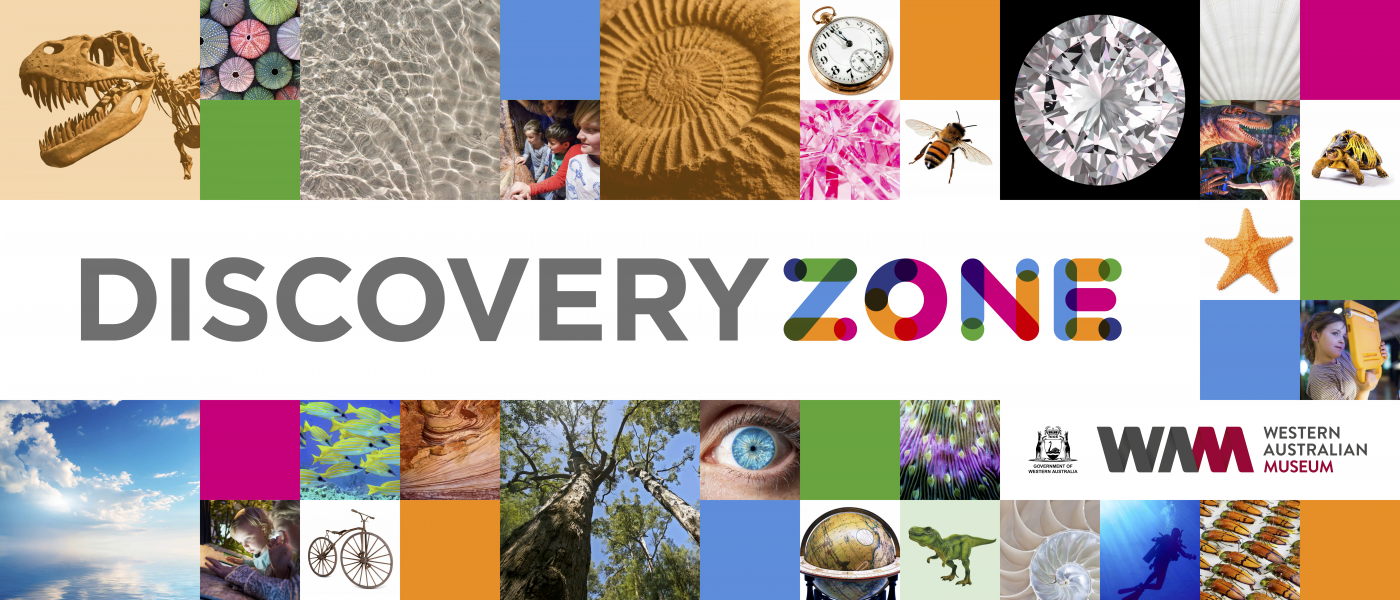 """""""A large banner with 'Discovery Zone' written centrally."""""""