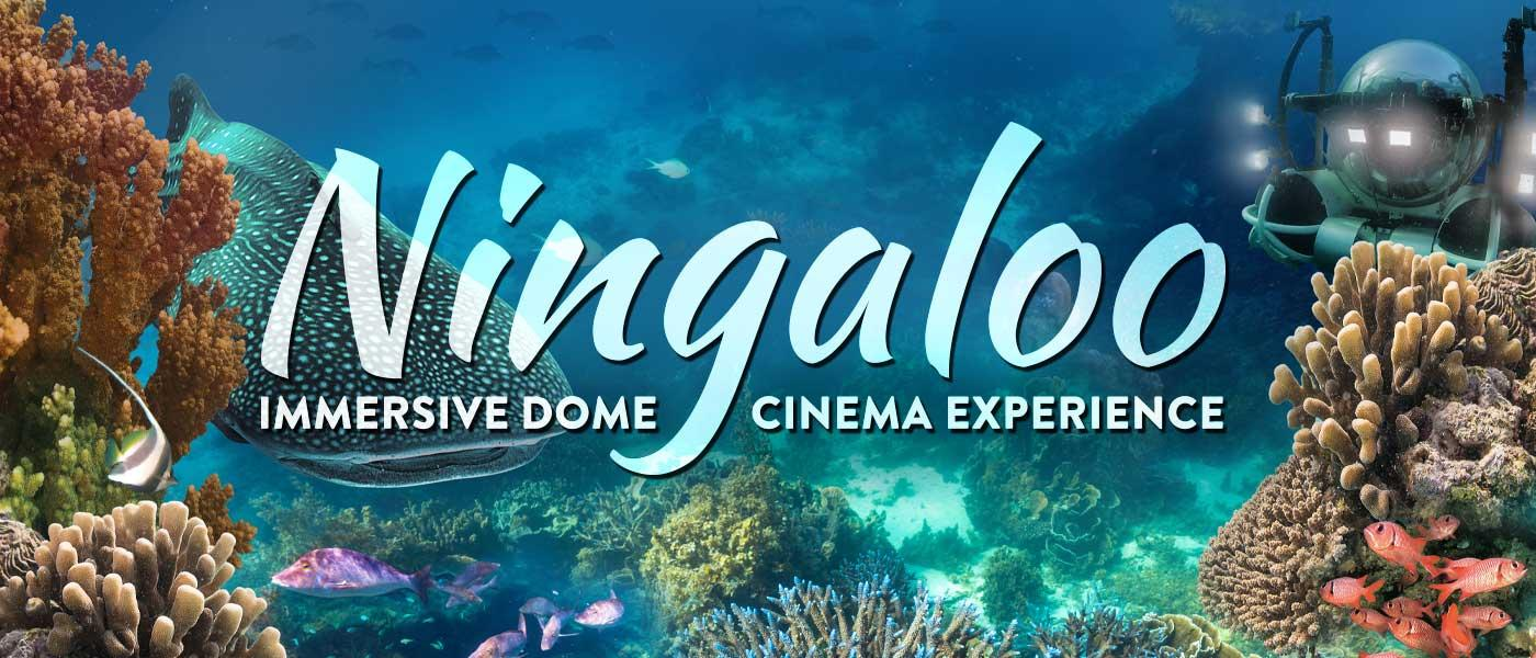 An underwater composite of the Ningaloo Reef