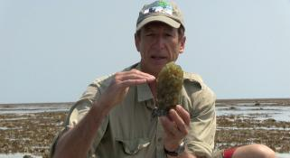 Clay Bryce holding a Baler Shell egg sack