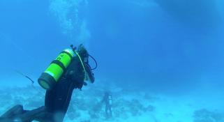 An scuba diver underwater