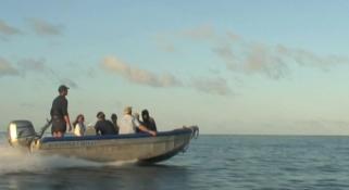 A speedboat heading towards an island