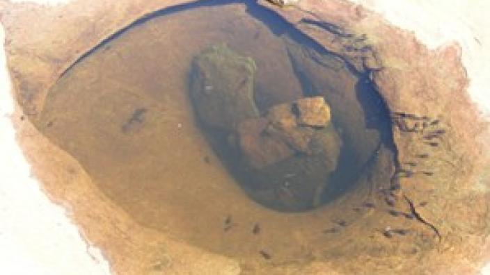 Gnamma Hole