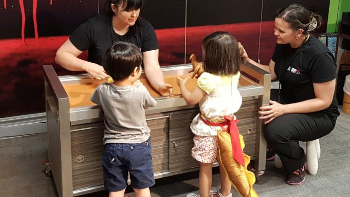 Activities at the WA Museum Discovery Zone