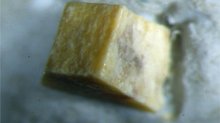 A cube of a yellow mineral forming on a rock wall