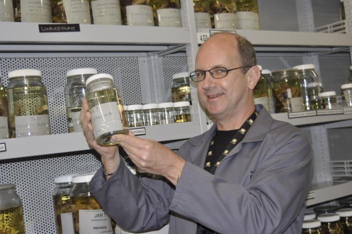 Paul Doughty inspecting a specimen