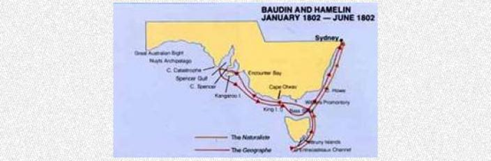 Map depciting the explorations of Baudin