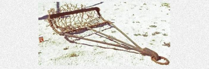 A pearl net on the beach