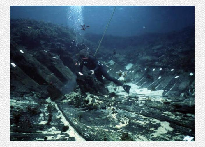 Diver performing research on submrged timber
