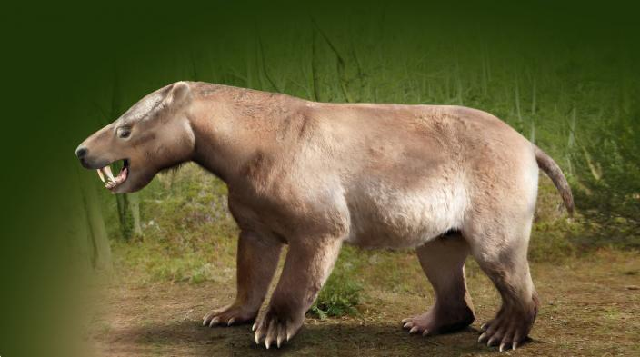large bear-like but herbivorous mammal, called Titanoides