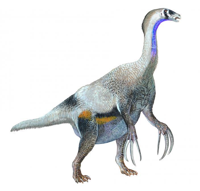 Illustration of a Therizinosaurus