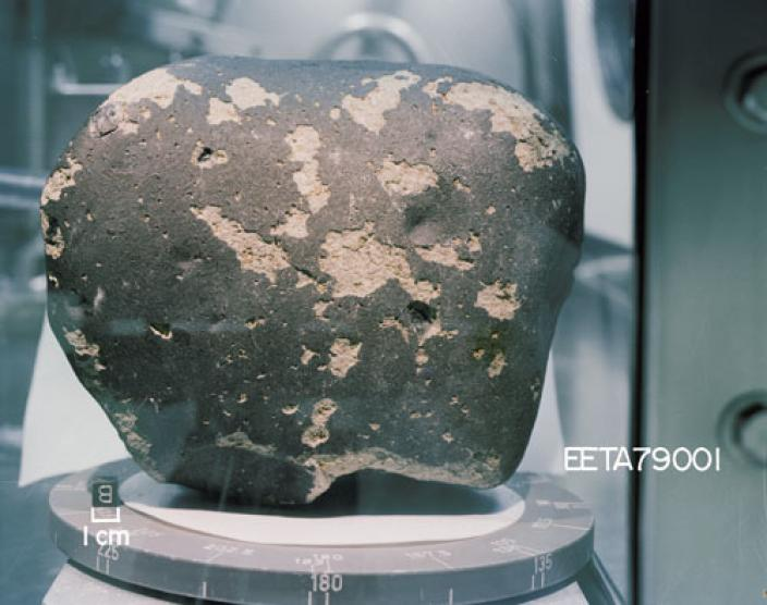 Image of a grey, blotchy meteorite in a glass case, 180 million years old.