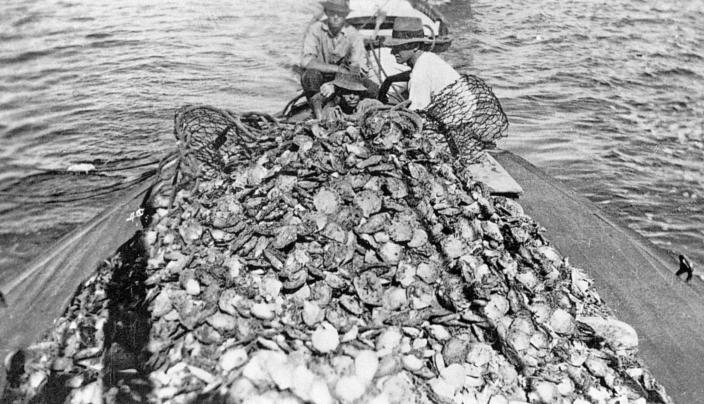 Image of a boat with a haul of pearlshell on deck