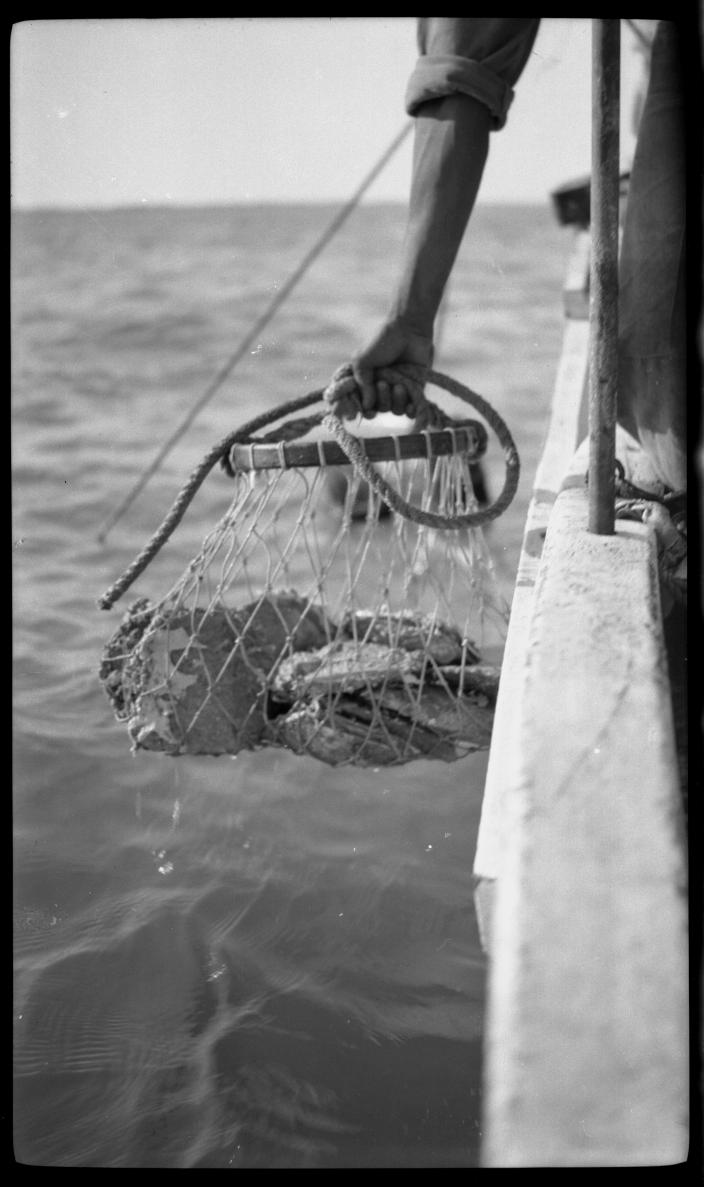 Image of a bag of pearlshell being lifted into a boat