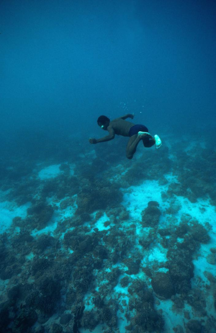 Indonesian diver
