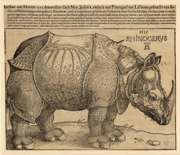 Broadside on a rhinoceros; with a woodcut of a rhinoceros standing in profile to