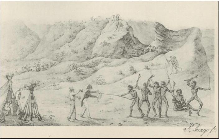 Jacques Arago, Nouvelle Hollande: Baie des Chiens-marins Presque île Peron, entr