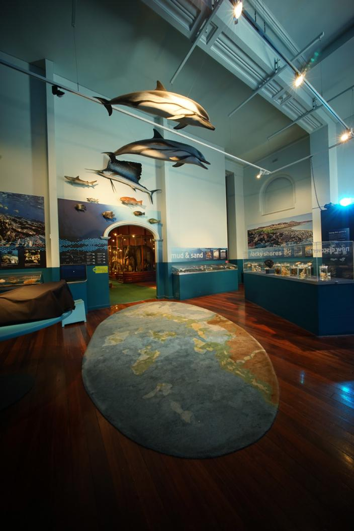 The Dampier Marine Gallery - before the decant