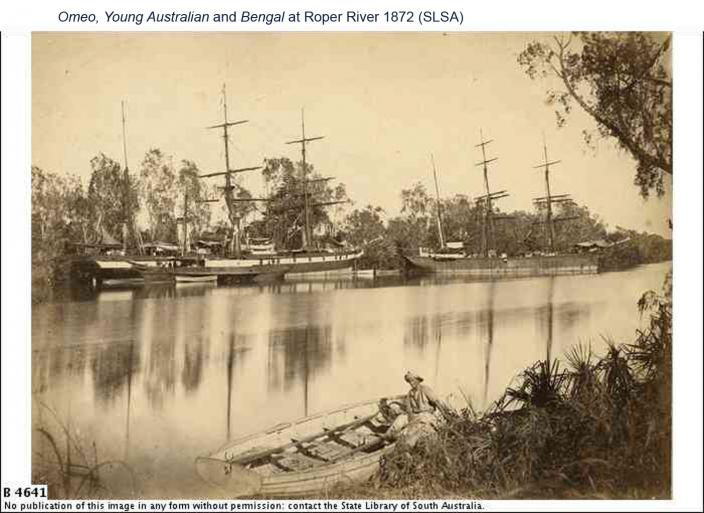 Omeo, Young Australian and Bengal at Roper River 1872
