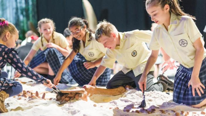 Students digging up a dinosaur fossil with excavation tools.