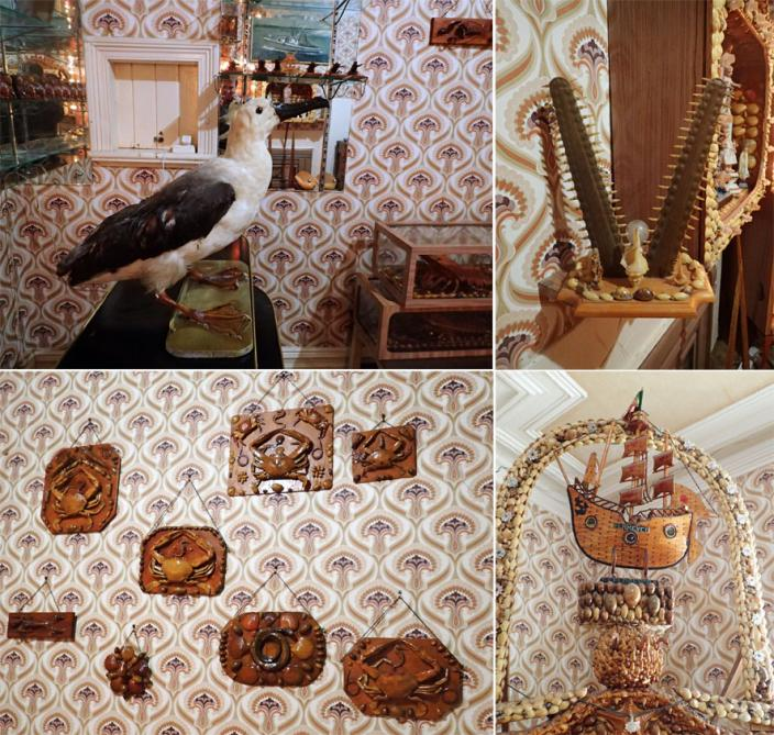 A collection of items from Florencio's art, including an Albatross, the toothed