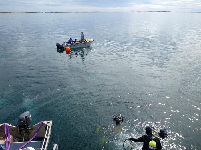 Picture of Divers enter the water during calm, perfect, sunny conditions.