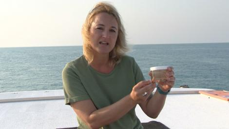 Monika Schlacher-Hoenlinger holding a jar containing soft coral, sitting on the back of a boat