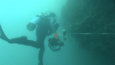 Diver under the water exploring the deep following the 50m tape