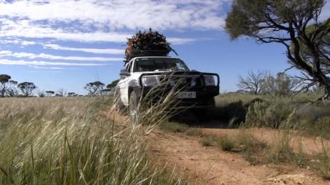 An all-wheel drive car going through the Nullarbor outback