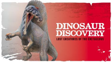 Dinosaur Discovery exhibition logo