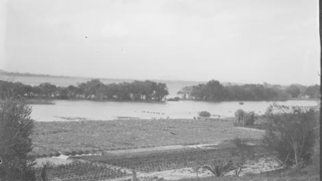 Black and white photo of flooding in a garden near a river