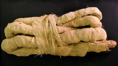 A mummified snake wrapped in bandages