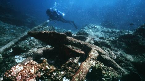 Divers exploring a site believed to be the Trial shipwreck