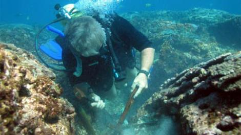 A diver excavating an artefact from a wreck site