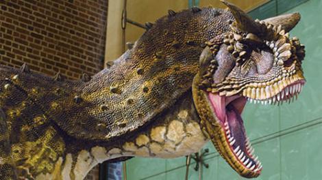 Carnotaurus – I love my Museum