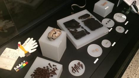Archaeology showcase in Travellers and Traders in the Indian Ocean World